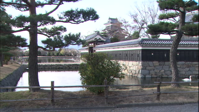 swans float in the moat adjacent to matsumoto castle in nagano. - moat stock videos & royalty-free footage