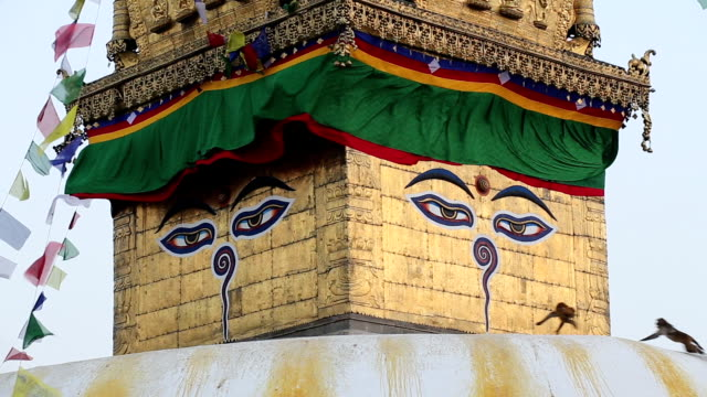 swayambunath (monkey temple),kathmandu,nepal - stupa stock videos & royalty-free footage