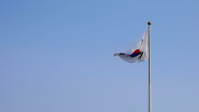 ms swaying south korean flag waving proudly / seoul, south korea - south korean flag stock videos & royalty-free footage