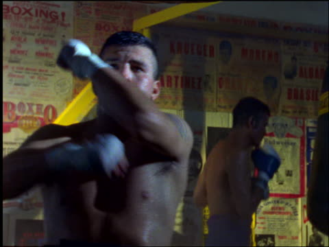 sweaty shirtless boxer hitting speed bag / other boxer in background - boxer dog stock videos and b-roll footage