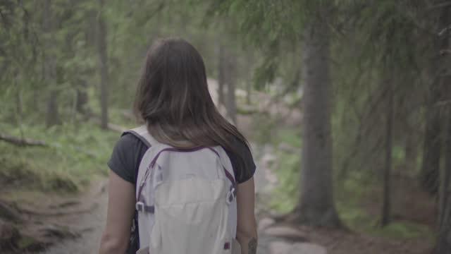 vidéos et rushes de sweden nature travel - eastern european culture