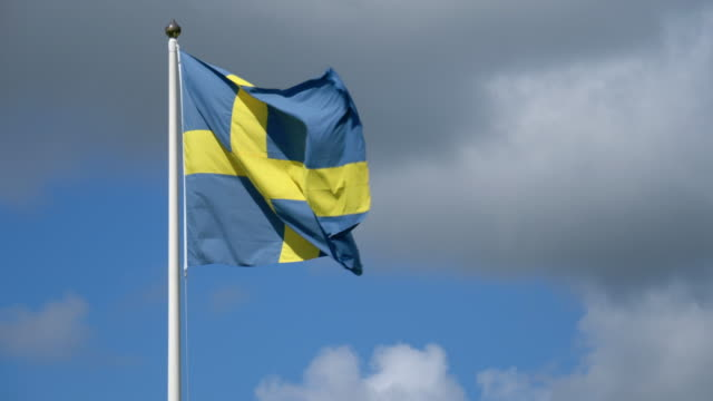 swedish flag in the wind - swedish flag stock videos and b-roll footage