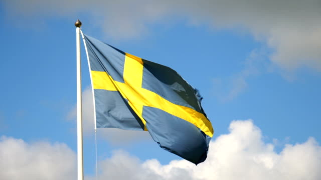 swedish flag in the wind - svezia video stock e b–roll