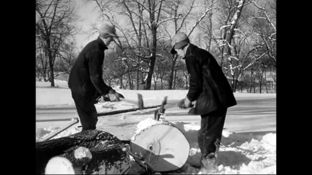 swedish immigrants chopping down trees in minnesota - work tool stock videos & royalty-free footage