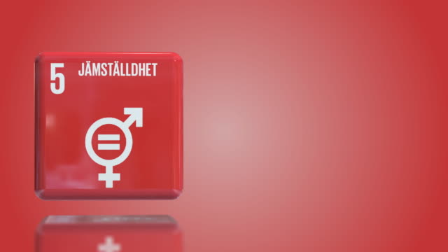 swedish number 5 gender equality 3d box sustainability goals 2030 with copy space - gender equality stock videos & royalty-free footage