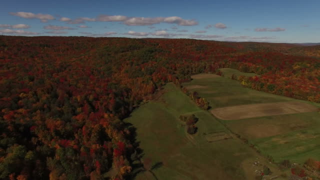 Sweeping View of New England Field in Fall