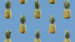 Sweet pineapples are slowly falling. Looped animation. Motion background
