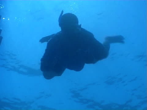 Swimmer freediving to camera and resurfacing