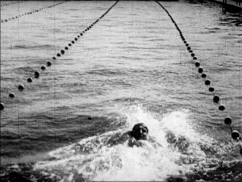 swimmer george kojak doing backstroke away from cam at far western championship / newsreel - backstroke stock videos & royalty-free footage