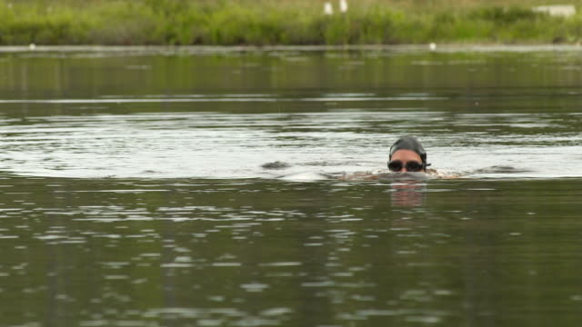 swimmer of the lake