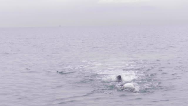 vídeos de stock, filmes e b-roll de swimmer swimming towards the camera - touca de natação