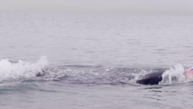 vídeos y material grabado en eventos de stock de swimmer with swimming hat swimming in the ocean - gorro de baño
