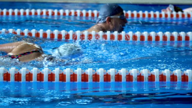 vídeos de stock, filmes e b-roll de natação da mulher do nadador na associação - esporte de competição