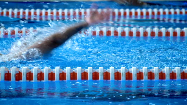 swimmer woman swimming in pool - length stock videos & royalty-free footage