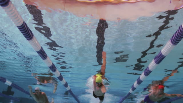 Swimmers begin to race from the edge of the pool.
