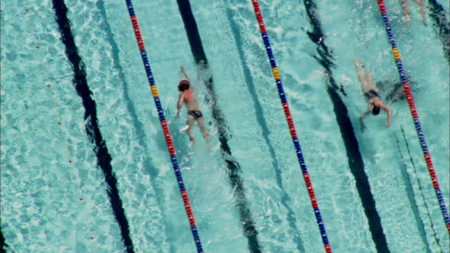 swimmers compete in a swimming pool. - sport venue stock videos & royalty-free footage