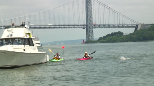 vidéos et rushes de swimmers from around the world challenge themselves in the annual 30 mile circuit of manhattan island solo swimmers passes george washington bridge... - salmini