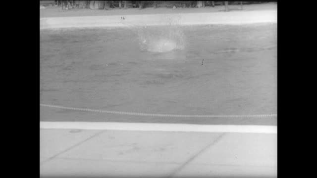 vídeos y material grabado en eventos de stock de swimmers jump gracefully off diving board in front of outdoor crowd in lincoln nebraska - oficial deportivo