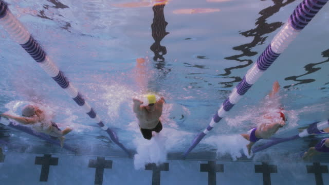Swimmers race in separate lanes after starting at the pool wall.