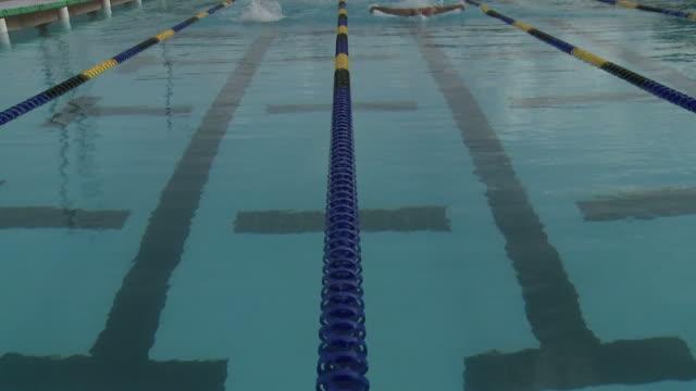 nuotatori - piscina pubblica all'aperto video stock e b–roll