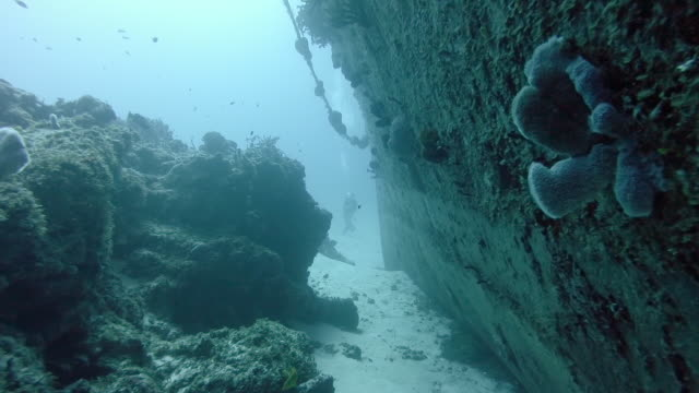WS Swimming between a shipwreck and coral reef