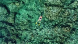 Swimming in clear turquoise sea