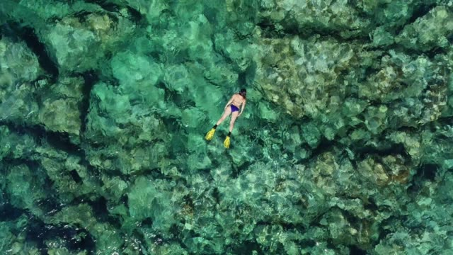 swimming in clear turquoise sea - underwater diving stock videos & royalty-free footage