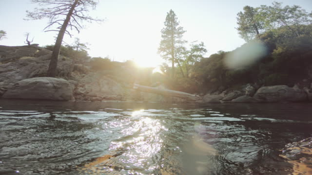 pov swimming in lake recreational area - yosemite national park stock videos and b-roll footage