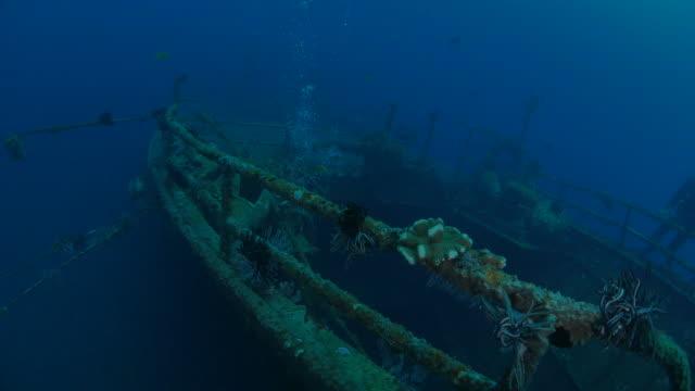 swimming on boga shipwreck undersea, sun light, bali (4k) - helm stock videos and b-roll footage