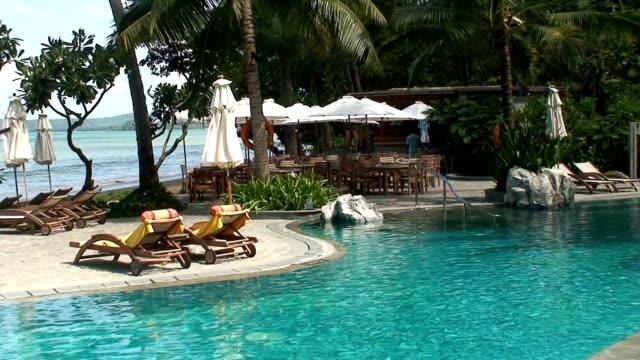 vídeos y material grabado en eventos de stock de bar de la piscina - palmera