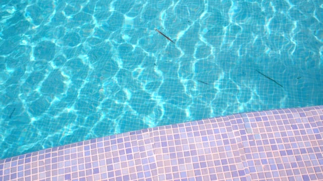 swimming pool - poolside stock videos & royalty-free footage