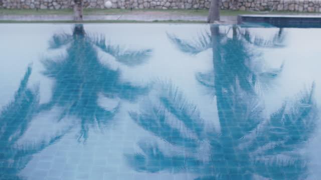 vídeos de stock, filmes e b-roll de piscina com coqueiro na praia à beira-mar. conceito de turismo de lazer durante as férias de verão. - lago infinito