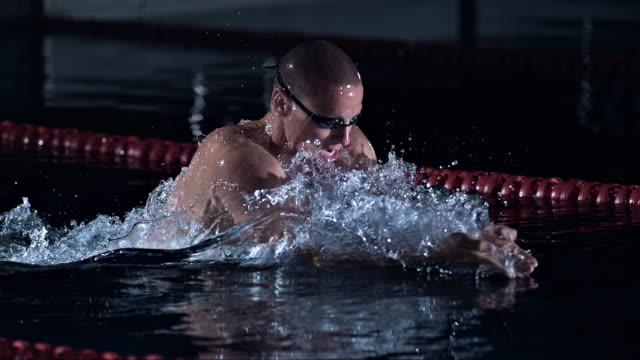 vídeos de stock, filmes e b-roll de swimming the breaststroke - kranj