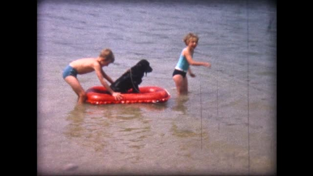 1964 swimming with dog in lac de joux, switzerland - cute stock videos & royalty-free footage