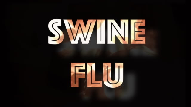 swine flu influenza pig virus computer graphic - epidemic stock videos & royalty-free footage