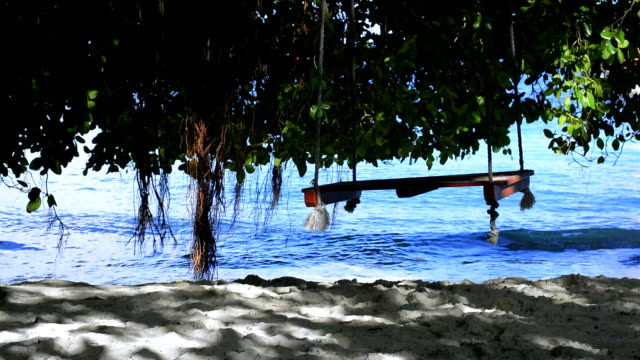 swing and tree on the beach - tropical tree stock videos & royalty-free footage