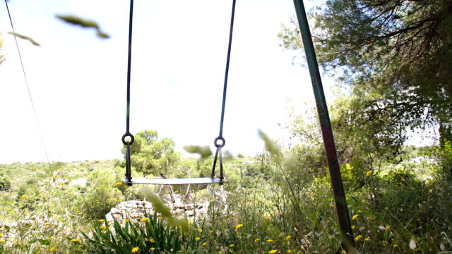 SLO MO Swing Swinging In The Wind