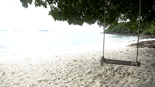vídeos de stock, filmes e b-roll de swing em uma árvore. - vista do mar