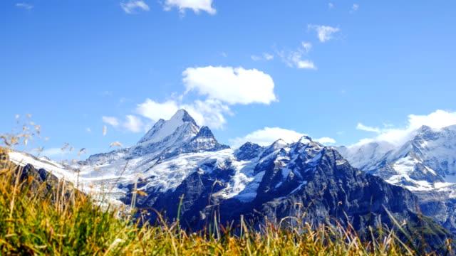 Swiss Alps - Stock Video