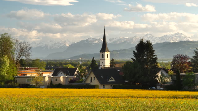 swiss mountains behind a yellow flowering meadow - austria stock videos & royalty-free footage