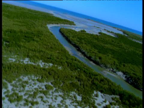 vídeos y material grabado en eventos de stock de swooping track over trees and river estuary, western australia - marea baja