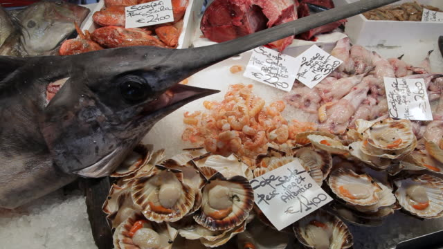 vídeos de stock, filmes e b-roll de mh ld sword fish and different types of seafood in market / venice, italy - crachá