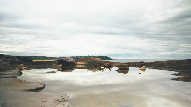 sydney coast landscape - dolly shot stock videos & royalty-free footage