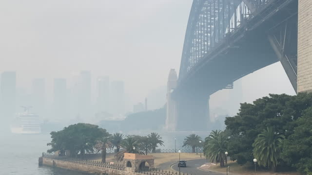 sydney inundated by thick smoke from bushfires throughout nsw. - forest fire stock videos & royalty-free footage