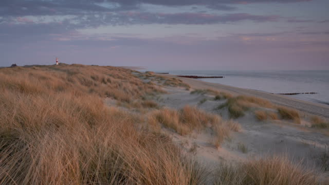 sylt at sunrise - sylt stock videos & royalty-free footage