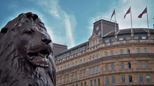 symbol of london. the lions at nelson's column, typical building, uk flag. - big cat stock videos & royalty-free footage