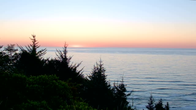 Symmetrical fir trees at sunset with ocean Oregon Coast Oregon 8
