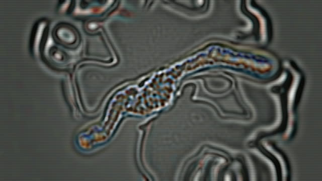 CU Synthetic microscopic view of growing organism / Athens, Greece