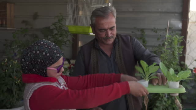 syrian family growing plants on foam from old mattresses at zaatari refugee camp in jordan - domestic garden stock videos & royalty-free footage