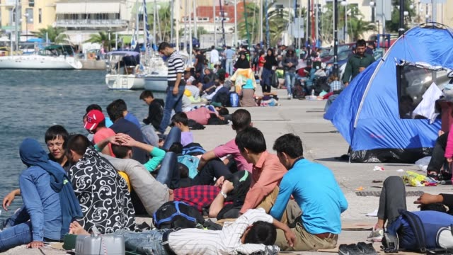 syrian migrants fleeing the war and escaping to europe, who have landed on the greek island of lesvos on the north coast at efthalou. up to 4,000 migrants a day are landing on the island and overwhelming the authorities. they are traficked by illegal turki - rifugiato video stock e b–roll